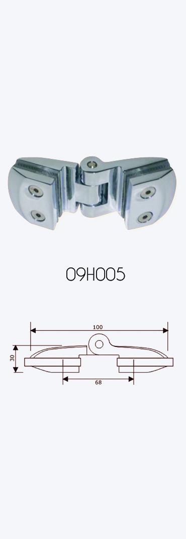 09H005
