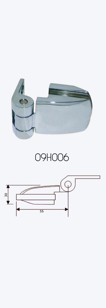09H006