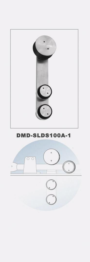 DMDSLDS100a1