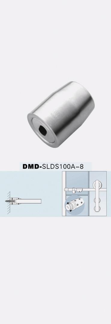 DMDSLDS100a8