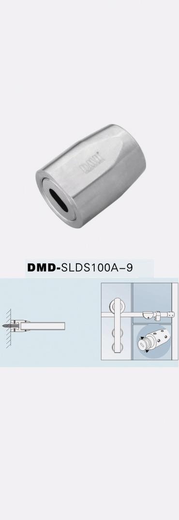 DMDSLDS100a9